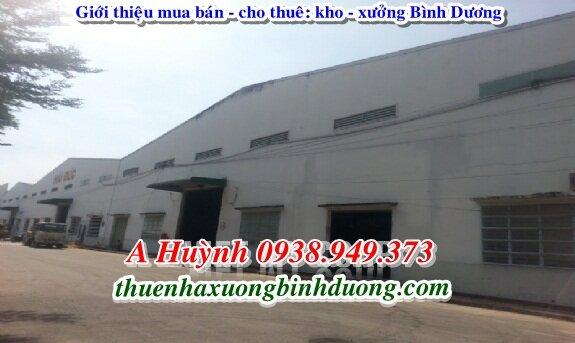 Cần Cho Thuê Xưởng Tại Thuận An